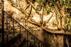 Jardín italiano Imagen de archivo