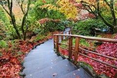 Jardín japonés Imagenes de archivo