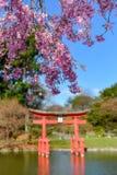 Jardín japonés - jardín botánico de Brooklyn Fotografía de archivo libre de regalías