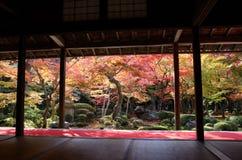 Jardín japonés del otoño con el arce Fotos de archivo libres de regalías