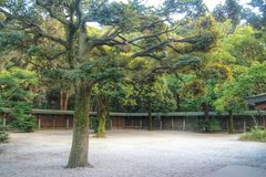 Jardín japonés en la capilla del meiji, Tokio, Japón Fotos de archivo
