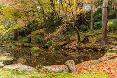 Jardín japonés en la estación del otoño Foto de archivo libre de regalías