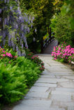 Jardín japonés floreciente del área pintoresca Fotografía de archivo
