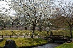 Jardín japonés, Hasselt, Bélgica Foto de archivo libre de regalías
