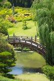 Jardín japonés hermoso enorme con la charca y el puente foto de archivo