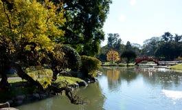 Jardín japonés Puerto Madero en la oscuridad fotografía de archivo libre de regalías