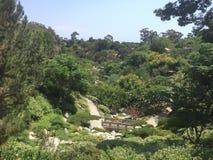 Jardín japonés, San Diego foto de archivo