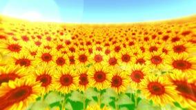 Jardín llenado de los girasoles Paisaje del campo del girasol el día soleado del verano Animaci?n del lazo almacen de metraje de vídeo