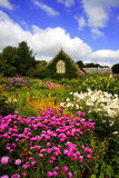 Jardín mágico del resorte con las flores y la casa, Lanhyd imagenes de archivo
