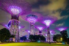 Jardín mágico en la noche, Singapur Imágenes de archivo libres de regalías