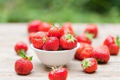Jardín macro del primer de las fresas dulces sabrosas frescas al aire libre fotos de archivo