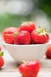 Jardín macro del primer de las fresas dulces sabrosas frescas al aire libre imagen de archivo