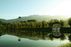 Jardín Malasia del lago Taiping Imagen de archivo libre de regalías