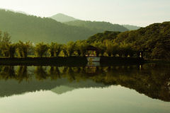 Jardín Malasia del lago Taiping Fotos de archivo libres de regalías
