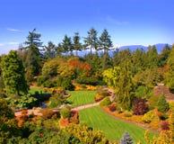 Jardín Manicured imagen de archivo
