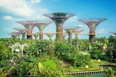 Jardín Marina Bay Sands Singapore imagenes de archivo