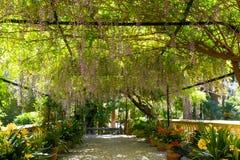 Jardín mediterráneo en la isla de Mallorca Fotografía de archivo libre de regalías