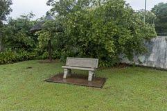 Jardín mojado de la mañana después de la noche lluviosa en Sabie Imagenes de archivo