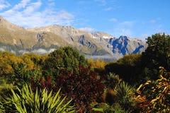 Jardín Nueva Zelanda de las montañas Foto de archivo libre de regalías