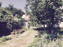 Jardín ocultado Fotos de archivo