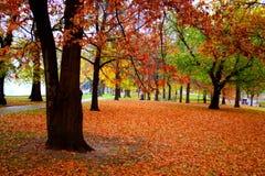 Jardín público de Boston foto de archivo