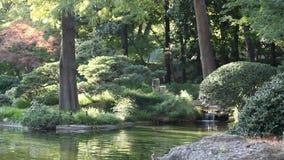 Jardín pacífico almacen de metraje de vídeo