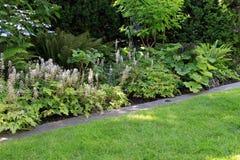 Jardín perenne del parque Imágenes de archivo libres de regalías