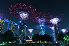 Jardín por la arboleda de Singapur Supertree de la bahía imagenes de archivo
