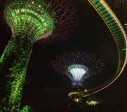 Jardín por la demostración de la luz de la noche de la bahía en Singapur Imagen de archivo libre de regalías