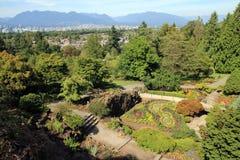 Jardín regular Imagen de archivo libre de regalías