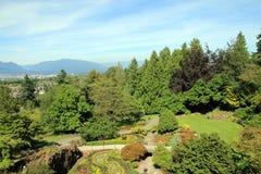 Jardín regular Imagenes de archivo