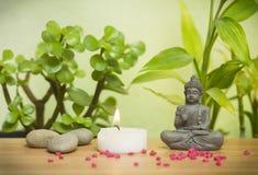 Jardín relajante del zen Imagen de archivo