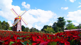 Jardín rojo Fotografía de archivo