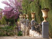 Jardín romántico con las flores Fotos de archivo