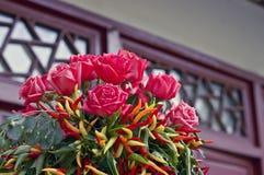 Jardín - Rose Foto de archivo