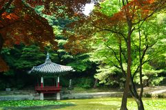 Jardín secreto en Seul, Corea Imagen de archivo libre de regalías