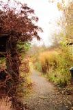 Jardín secreto ocultado en otoño Imagen de archivo