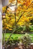 Jardín suburbano de la luz del sol de la caída foto de archivo libre de regalías
