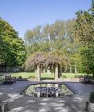 Jardín tranquilo en el parque con glicinia y la charca Imagen de archivo libre de regalías
