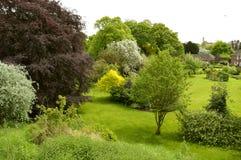 Jardín trasero en centro de ciudad de York Imagen de archivo
