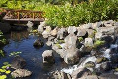 Jardín tropical con el lago Imagen de archivo libre de regalías