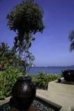Jardín tropical de la playa Imagen de archivo