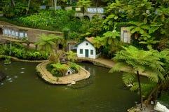 Jardín tropical del palacio de Monte Fotos de archivo