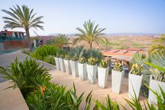 Jardín tropical del paraíso Fotos de archivo libres de regalías