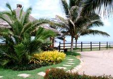 Jardín tropical en la playa Fotos de archivo