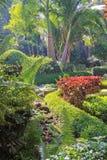 Jardín tropical enorme en Bangalore Fotografía de archivo libre de regalías