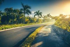 Jardín tropical y camino hacia centro turístico de lujo en Punta Cana, foto de archivo