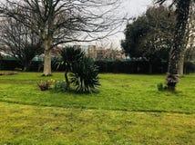 Jardín verde imagen de archivo