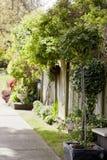 Jardín verde Imágenes de archivo libres de regalías