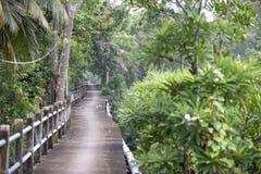 Jardín verde agradable Fotografía de archivo